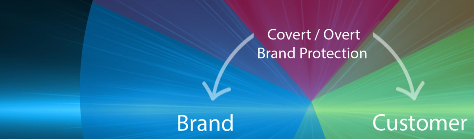 Brand Security Banner